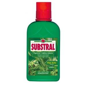 Ingrasamant Substral pentru feriga si plantele cu frunze verzi